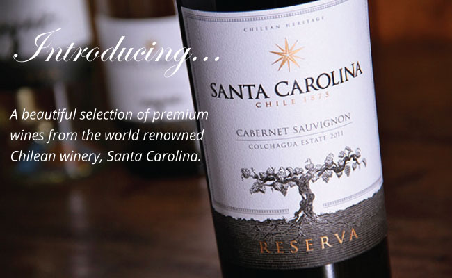 An extensive range of premium Chilean wines now available.
